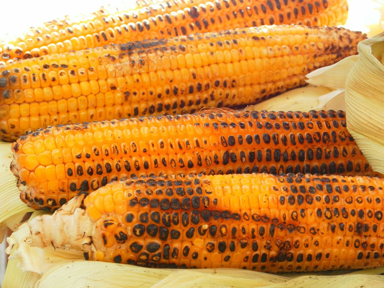 Grill Roasted Corn on the Cob image