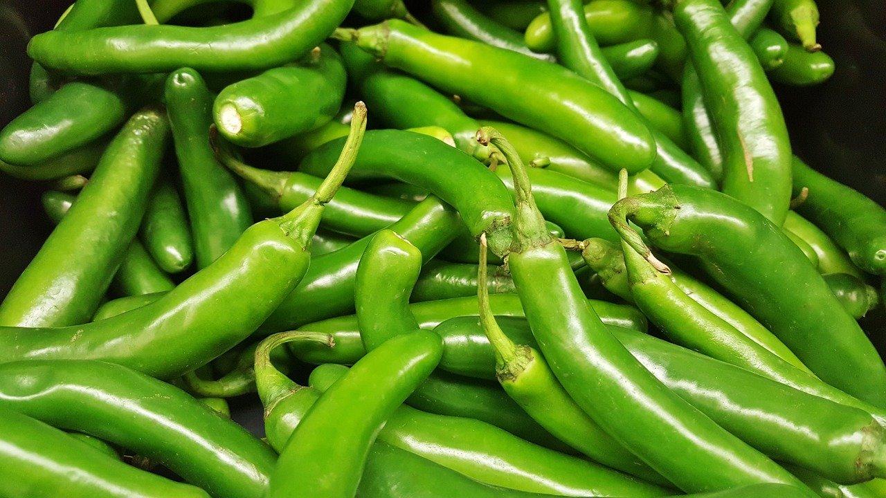 Hot Serrano Chile