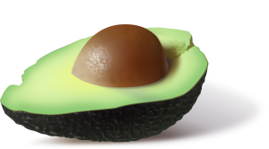 Avocados not a vegetable but a fruit