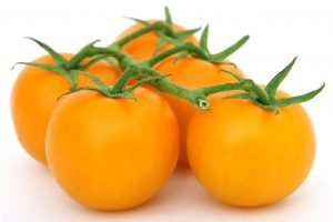 Yellow Tomatoes for Yellow Fruit Salsa